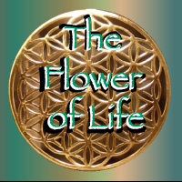What-is-the-Flower-of-Life