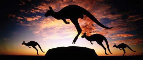dreamtime_kangaroos